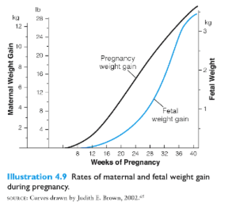Healthy Weight Gain During Pregnancy Mommy To Be Prep